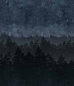 Шведские обоиОбои Nordic Night 8845 - Eco Wallpaper / Graphic World